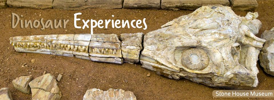 Dinosaur Experiences
